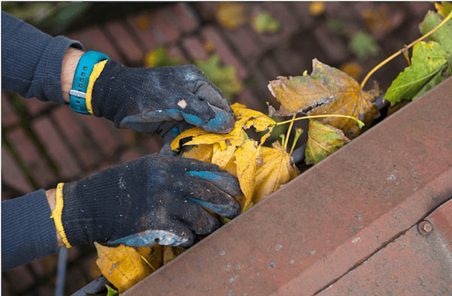 gutter cleaning franklin wi